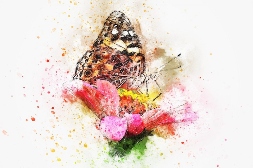 butterfly, insect, art